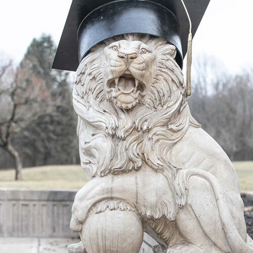 A PNW Lion Sculpture wearing a commencement cap
