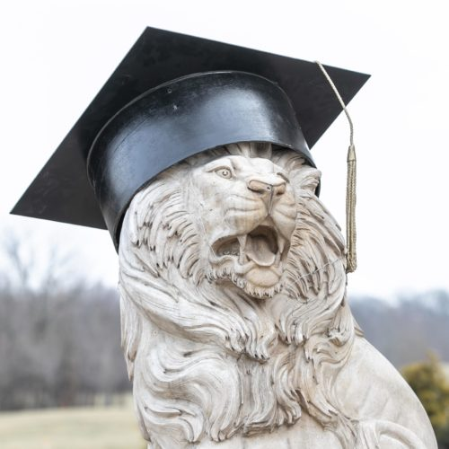 commencement lion in grad cap