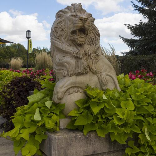 Lion Statue Out door