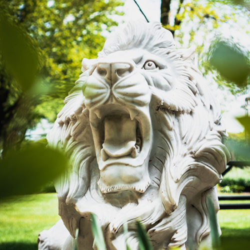 A roaring lion sculpture