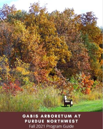The Gabis fall program guide is pictured.
