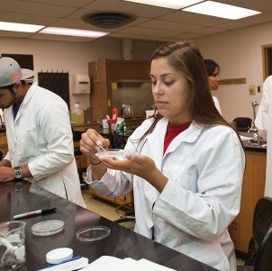 Student Working In BioScience Lab