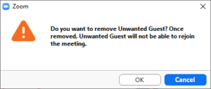 A dialog box telling you that the removed user cannot return to the zoom meeting