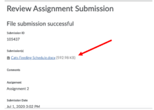 Highlights clickable file link to view incorrect submission.
