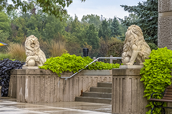 Lion sculptures on PNW's Westville campus