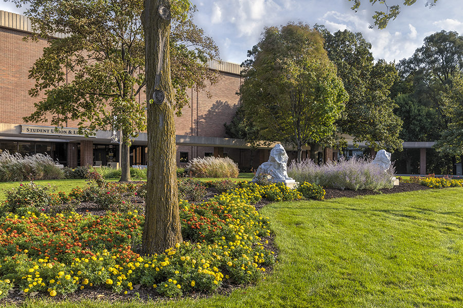 Lion sculptures in front of the library building on PNW's Hammond Campus.