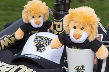 Lion plushes and other PNW licensed products