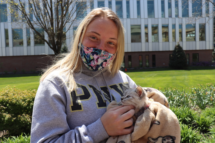 A dog is pictured for SGA Cram Jam.