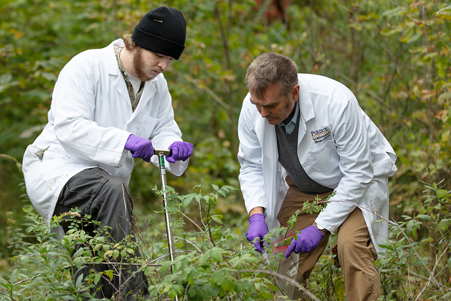 Professor and student working in a field
