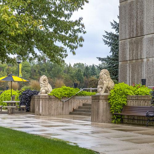 Lions on PNW's Westville campus