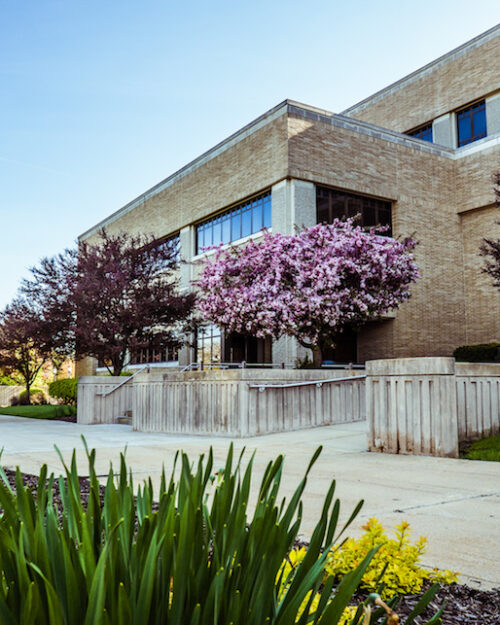 Image of Westville campus in the spring.