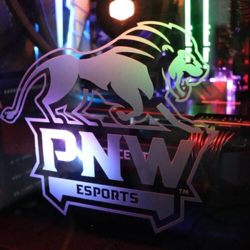 PNW Esports Logo is pictured.