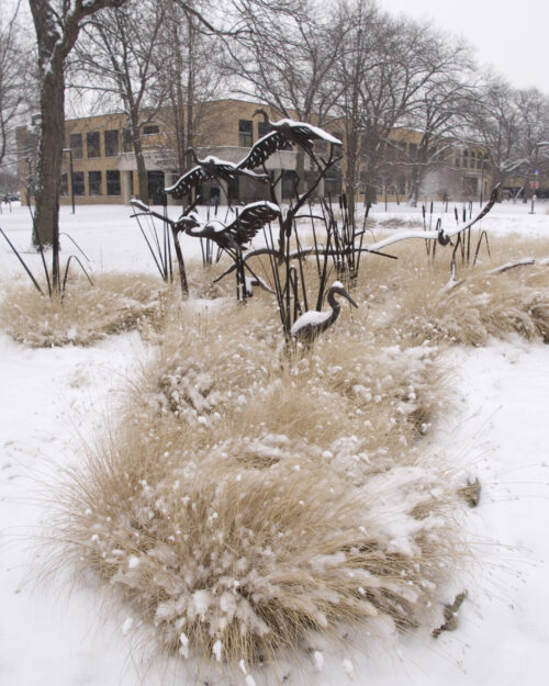 A campus sculpture featuring herons set amidst snow and prairie grasses