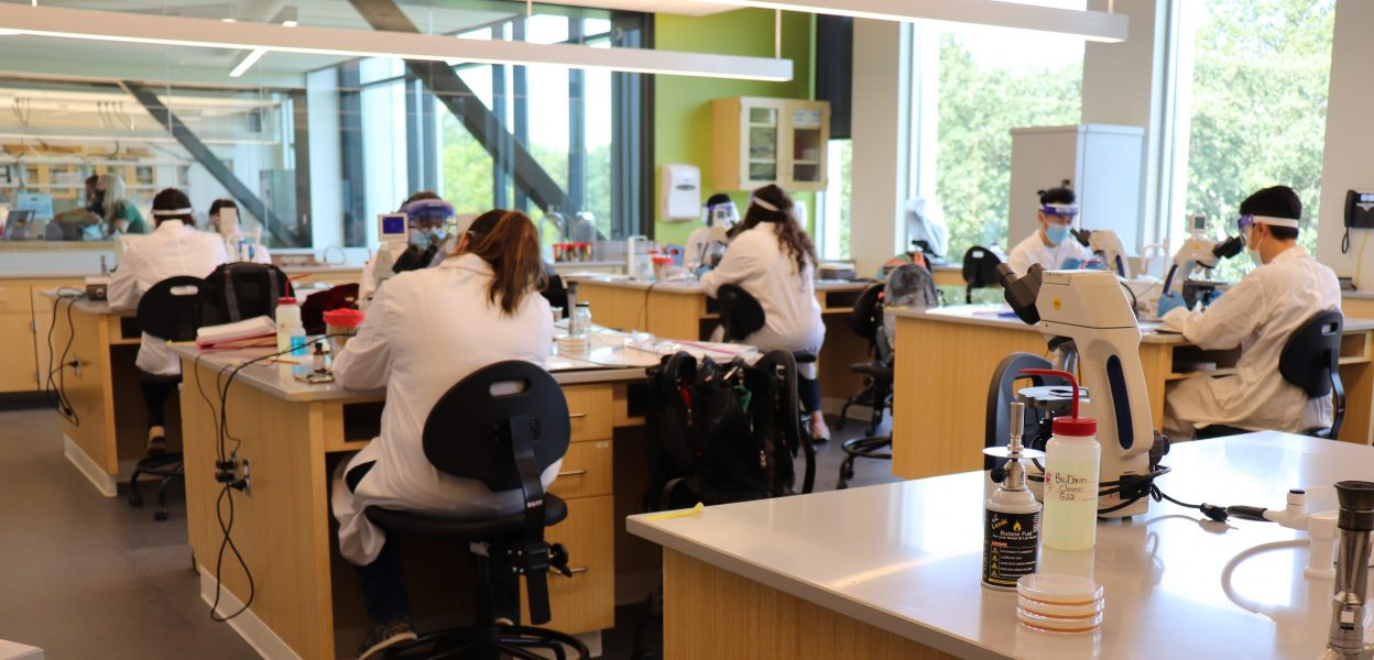 Students work in a lab in PNW's Nils K. Nelson Bioscience Innovation Building